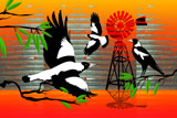 OutBackMagpies