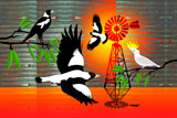 OutBackMagpies2