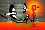 OutBackMagpies3